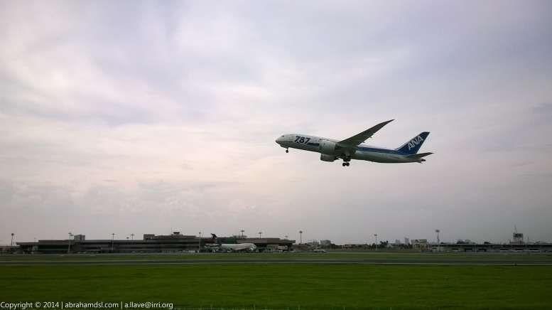 An Air Nippon Airways (ANA) Boeing 787-8 Dreamliner